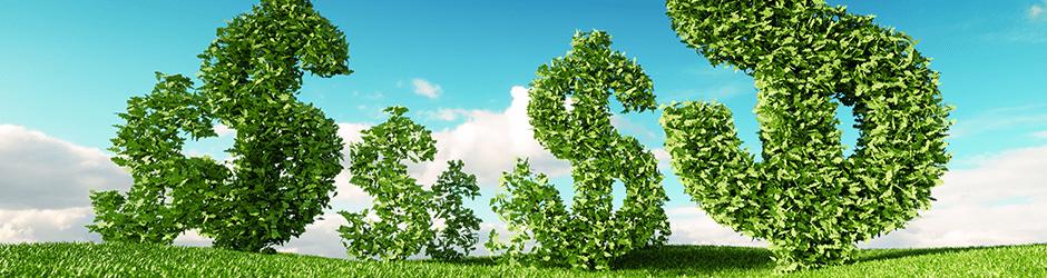 Ökologie und Ökonomie im Einklang